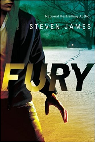Book cover of 'Fury'