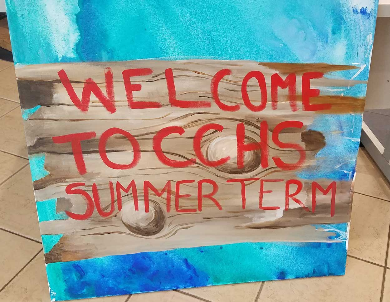 Welcome to CCHS Summer Term